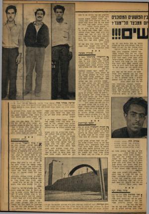 העולם הזה - גליון 1035 - 14 באוגוסט 1957 - עמוד 13 | חדד נתפס, נדון לשמונה שנות מאסר. … לבית־סוהר זה, בעל יכולת קיבול של כמאתיים אסירים, נשלחים רק פושעים שנדונו לחמש שנות מאסר ומעלה, כולל נדונים למאסר־עולם. …