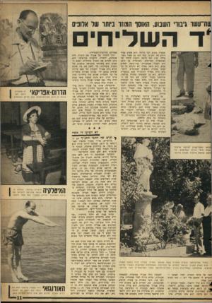העולם הזה - גליון 1090 - 20 באוגוסט 1958 - עמוד 11 | באיטליה הפכה לדמות נערצת לא פחות מאשר עמוס חכם בישראל, זכתה לברכת האפיפיור והצליחה להגביר את תפוצת התנ״ך. … בכלל מתארים הכל באופן מוגזם.״ גם בזרוח כוכבו לא שכח