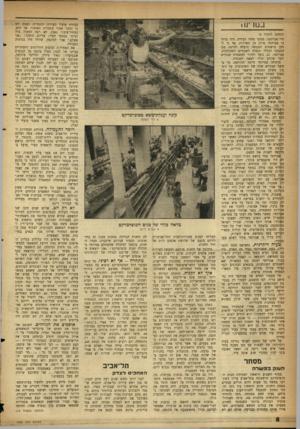 העולם הזה - גליון 1092 - 3 בספטמבר 1958 - עמוד 8 | בנוו ינו • (המשך מעמוד )5 לוי אברהמי, מפקד מחוז הבירה. היה ברור כי אברהמי סולק מן השירות, אף כי למען טישטוש המעשה הועלה לדרגת סגן המפקח הכללי ונשלח לשנתיים