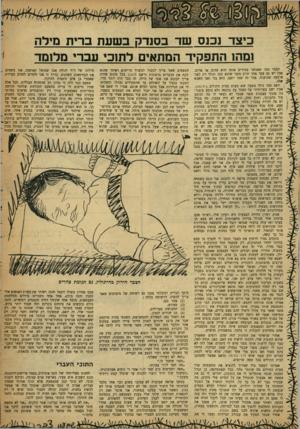 העולם הזה - גליון 1205 - 26 באוקטובר 1960 - עמוד 17 | כיצד נכנס שד בסנדק בשעת ברית מילה 1נזהז התפקיד המתאים לתוכי עברי מלומד הצבר כמו שאנחנו מכירים אותו הוא צהוב או אדום, אבל יש גם צבר אחד ירוק מפני שהוא קטן ונולד