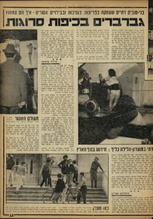 העולם הזה - גליון 1330 - 6 במרץ 1963 - עמוד 13   בני־שביס דתיים שעסקה בפריצות, בגניבות ובבירו״מ אסורים -איך הם צמחו? ג בר ברי בסיבות סרוגות בילתה ב כ לי ף. אפשר היה לזהותם כדתיים רק בגלל עתוגאי, העובד בין