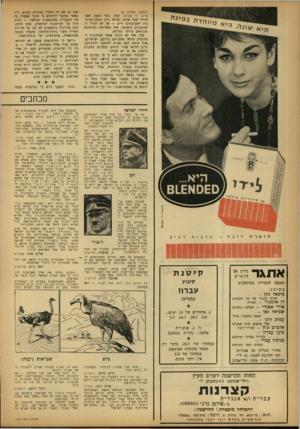 העולם הזה - גליון 1343 - 4 ביוני 1963 - עמוד 4 | (המשך מעמוד )2 טייס, דר שפיגל, ועוד. נוצר המצב האבסורדי שעל אדמת ישראל ניתן חופש־העיתו־נות לשבועונים זרים — אך לא לגדול השבועונים בישראל, אחד משלושת העיתונים