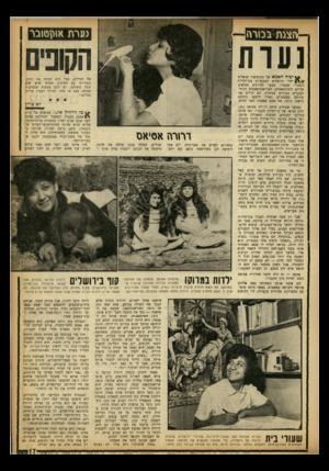 העולם הזה - גליון 1364 - 30 באוקטובר 1963 - עמוד 8 | גערת אמן סובר נעות קונים יפוד! האמא של הקופים?״ שואלים ילדי ירושלים המבקרים בגן־החיות התנכ״י שבעיר. מבעד לסורגים מציצים אליהם השימפאנזים, האוראנגוטאנגים