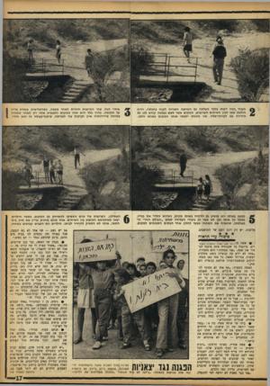 העולם הזה - גליון 1366 - 13 בנובמבר 1963 - עמוד 17 | כעבור כמה דקות בלבד העלתה גם הפרוצה השנייה לקוח בחכתה, והיא הולכת אתו לבין השיחים הקרובים, המקום אשר לשם נעלמה קודם לכן גם הידידה עם לקוחה־שלה. שני הזוגות