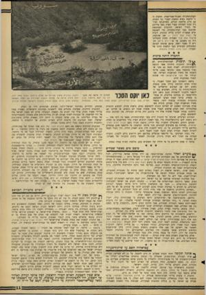 העולם הזה - גליון 1427 - 13 בינואר 1965 - עמוד 11 | מומחי ההרים שעל גבול סוריה־ירדן. … סעיף **6בועיים לאחר חתימת שביתת־הנשק עם ירדן נערכה אסיפה בניו־יורק. … היא נתקלה אז במיכשול שלא היה קיים בימי המנדט — המקום