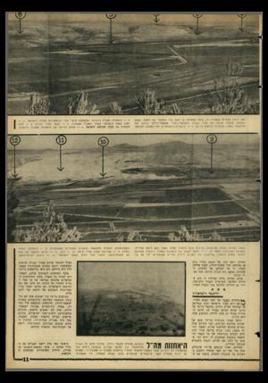 העולם הזה - גליון 1436 - 17 במרץ 1965 - עמוד 11 | ואת הרמת הסורית שממזרח לו, צולם ממצודת נבי־יושע בצד המערבי של העמק. הקטע בתמונה למעלה מראה את אזור הגבול הישראלי —סורי ממשמר־הירדן בדרום ועד לדרבשיה בצפון.