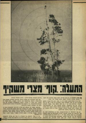 העולם הזה - גליון 1605 - 5 ביוני 1968 - עמוד 13 | ך י תבונן בתמונה זו. זה מה שהיית רואה מבעד לכוונת של רובהי י צלפים. במרכז העיגול יושבת דמות קטנה. זהו ״קוף״. לכל אורך תעלת־סואץ יאמרו לך, כי ״קוף״ הוא חייל
