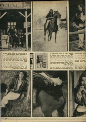 העולם הזה - גליון 1608 - 26 ביוני 1968 - עמוד 17 | ג^היות מעורב בדו־קרב פה לה ליד המיסבאה, קשרה את סוסה אל ^רון־העץ שמתחת לשו- שוש הניחה א ת ידה החל דו־קרב החתיכות גו בכל רחבי סיני המ- הגיעו. ג׳ון ויין הטוב,