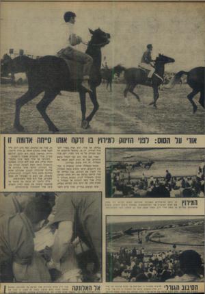 העולם הזה - גליון 1652 - 30 באפריל 1969 - עמוד 16 | אוו׳ על הסוס: לטי הזינוק למיווץ בו זרקה אוהו סייחה אווגה זו בסייחר של אודי. הוא האיץ באודי להצטרף למירוץ. רק אז, כששאר הרוכבים היו כבר במרחק של 50 מטר לפניו,