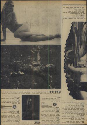 העולם הזה - גליון 1652 - 30 באפריל 1969 - עמוד 20 | ״האף שלי קטן יחמוד. הסנטר אגרסיבי, רבוע. האוזניים קטנות. את צווארי איני מכירה.׳ ״בסדר, נעצור כאן.״ ״אתם, כנראה, לא כמו רוב האחרים.״ שאלה: אילו היה ביכולתך