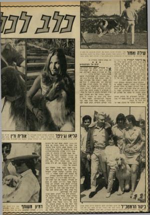 העולם הזה - גליון 1704 - 29 באפריל 1970 - עמוד 20 | שילה ואגוו אחרי התחרות נערכה הופעה של כלבים מאומנים, בה בלט הי ק1לי היפהפה אמור, שנשמע לבעליו שילה בלי היסוס. כלבים אח ריס שהדגימו את ידיעותיהם היו ממושמעים