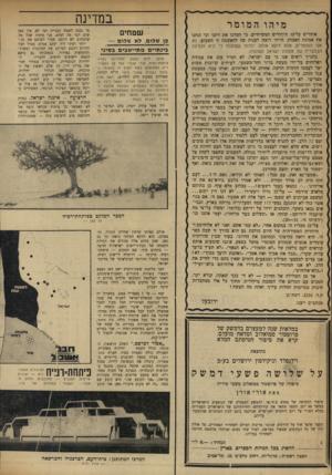 העולם הזה - גליון 1723 - 9 בספטמבר 1970 - עמוד 16 | במדינה מיהו המומר אומרים עלינו, היהודים המשיחיים, כי המרגו את דתנו וכי זנחנו את אמונת האבות. הייתי רוצה לענות פה להאשמה זו השבוע. לא אנו המומרים, אלא דוקא אותה
