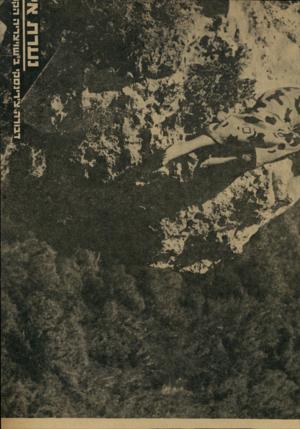 העולם הזה - גליון 1726 - 30 בספטמבר 1970 - עמוד 20 | שויצו־יה