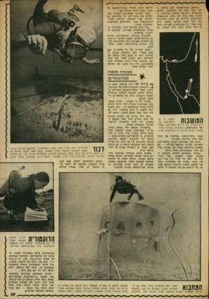 העולם הזה - גליון 1842 - 20 בדצמבר 1972 - עמוד 39 | ״ציבעם כסוף־אפרפר וחם בולטים כ חצי מטר מעל פני הקרקעית. גופיהם מקושתים, ועיניהם בולטות בדריכות בחיפוש אחר טרף. הם נעים ומתכופפים, מתרוממים ויורדים עם הזרם