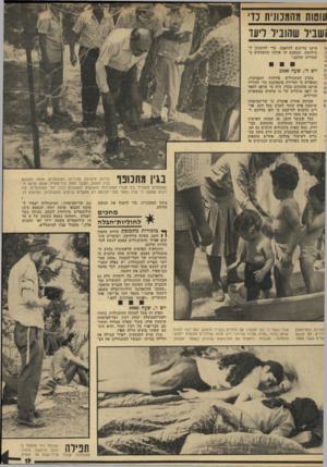 העולם הזה - גליון 1926 - 31 ביולי 1974 - עמוד 19 | סות מהממגית נד וביל שהוביל ליעז ל, ו חיינו צריכים להתאמן, כדי להתכונן ל־ !מילחמה, ובמקום זה אנחנו !מתע&קים בשטויות שלכם.״ יום ה׳ ,שעה בקרב המתנחלים פורחות