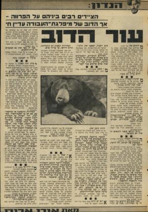 העולם הזה - גליון 2049 - 8 בדצמבר 1976 - עמוד 11 | הוג״דים רבי ביניהם על הפרווה - אך הדוב של מיפלגת־העבידה עדיין ח׳ ף} חלקים את עור הדוב. )4הציידים כבר מתמוגגים מנחת ב־מסיבת־הניצחון. כל אחד מהם מתפאר בחלקו