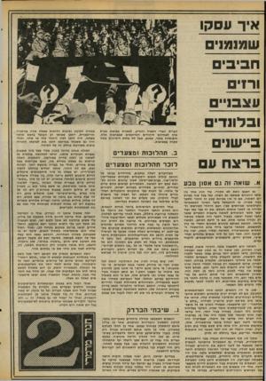 העולם הזה - גליון 2068 - 20 באפריל 1977 - עמוד 18 | אחד הסרטים המרשימים ביותר אודות הנאצים, הוא הסרט הנאצי התיעודי המתאר את הראלי של המפלגה בנירנברג ב ,1934-בשנה לאחר עלייתם לשלטון. … זוהי מפלגה בעלת תבונות