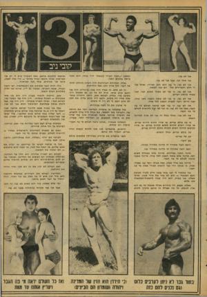 העולם הזה - גליון 2074 - 1 ביוני 1977 - עמוד 17 | אני לא גבר. אני אולי זכר, אבל אני לא גבר. אני לא גבר, כי גבר הוא חזק ושרירי, ואילו אני די חלש והשרירים שלי הם כמו חמאה. אני לא גבר, כי גבר לא מפחד משום דבר,