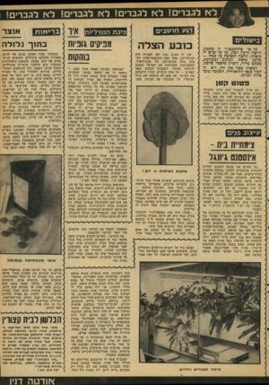 העולם הזה - גליון 2110 - 8 בפברואר 1978 - עמוד 49 | לא לגברים! לא לגברים! לא לגברים! לא לגברים! רגע חו שבים בישולים כל מי שהתפנצ׳ר לו מתכון, ורוצה לדעת למה, כל מי שיש לו הושיוה, ורוצה תשומה על כמה — מוזמן כזאת