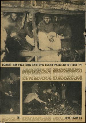 העולם הזה - גליון 2115 - 15 במרץ 1978 - עמוד 25 | ״הם היו בפיקניק, יש כאן שאריות של מזון קרא בכאב חבלו־המישטרה, שנבר בתוך שרידי האוטובוס בשמיטפחת מכסה את פניו, וכפפות״גומי משוכות על ידיו . … כדי לבצע את המשימה