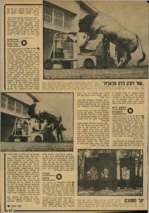 העולם הזה - גליון 2132 - 12 ביולי 1978 - עמוד 47   להיות. כאילו אמר קדישמן: אין דבר כזה ״מהטבע לאמנות ומהאמנות לטבע.״ הטבע הוא האמנות והמעבר ביניהם הוא מיותר. לדעת רבים הצליח קדישמן למצות בכך את רעיון הביאנלה