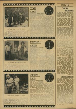 העולם הזה - גליון 2152 - 29 בנובמבר 1978 - עמוד 49 | קולנוע י שראל בוש המליונים הנושא המסקרן ביותר את כל מי ש עושה באחרונה סרטים בארץ, הוא גורל קרן 12 המיליונים, שאושרה עקרונית על- ידי ועדודהכספים של הכנסת עוד