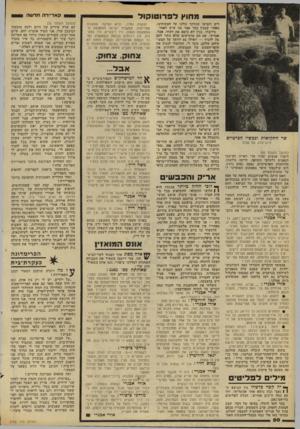העולם הזה - גליון 2182 - 27 ביוני 1979 - עמוד 43 | יגאל הורוביץ: גס בוויכוח הזה. … יגאל הורוביץ: אבל לרוע המזל אין לו עופות.