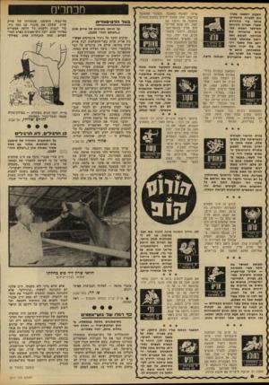 העולם הזה - גליון 2211 - 16 בינואר 1980 - עמוד 6 | ו ש1 מכוזכים בעלהל טי פנו די ת על חוותו הפרטית של אריק שרון (״העולם חזה״ .)2210 מרבים לדבר על ניגוד אינטרסים אפשרי בין אריק שרון כשר־החקלאות לבץ אריק שרון