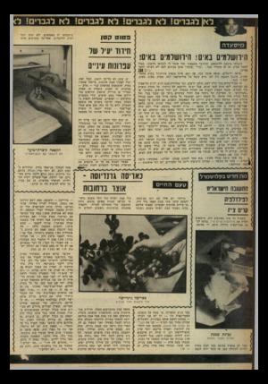 העולם הזה - גליון 2244 - 3 בספטמבר 1980 - עמוד 59 | פ טנ ט ק טן מיסעדה הירושלמים נאים! הירושלמים באים! קיבלתי מיכתב דליקטאס, שהיושר המצפוני שלי אומר לי להביאו כלשונו, מבלי לחסר פסיק. אז זה מתחיל ככה :״שרי״