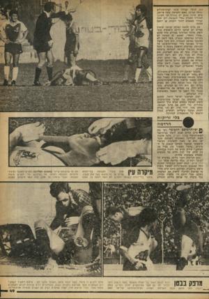 העולם הזה - גליון 2248 - 30 בספטמבר 1980 - עמוד 49   .2:3הרצל קביליו פונה לביודההולים ונותח בברכו. מאמן הקבוצה, משה פרלמן, טוען שלכל שחקן יש מחליף וכי השוער המחליף הצטיין במדי הקבוצה. לכן עשה קביליו מאמצים לחזור