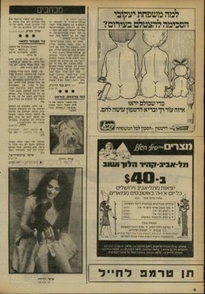 העולם הזה - גליון 2255 - 19 בנובמבר 1980 - עמוד 8 | מכרוב , (המשך מעמוד )6 אגודת־ישראל י בי השמאל זה ייבסקציא. עם תיאבון אדיר להש מיד את דת־סיני. ואגודת־־ישראל מפריעה לשמאל לבצע את זממו — כי לכך נוצרה