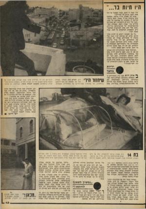 העולם הזה - גליון 2256 - 26 בנובמבר 1980 - עמוד 44   היו חיות בר״.־־ שלי ואמר לי לקום. קמתי וקפצתי על רגל אחת לעבר הג׳ים של החיילים.״ אביה של האביר הד״ר ברמקי, משתתף עתה בוועידה בחו״ל. אשתו, חיפה ברמקי, הודיעה לו
