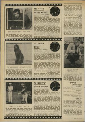 העולם הזה - גליון 2263 - 14 בינואר 1981 - עמוד 49 | גברת מפוקפקת. התוצאה: סרט ש נקרא תחילה ליל קיץ אחד ואחר כד שונה שמו לגלוריה. שהרי ברור, שהעיקר, ה בולט והמשכנע ביותר בסרט היא הדמות הראשית. זוהי גברת בעלת עבר