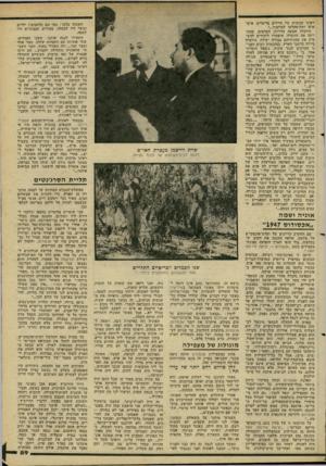 העולם הזה - גליון 2278 - 29 באפריל 1981 - עמוד 59 | ראינו קבוצות של חיילים בריטיים, איש* איש ותת־מקלעו למותניו...״ הוועדה שמעד. עדויות. הערבים, שהח רימו את הוועדה, איפשרו ליהודים להש מיע את טענותיהם בצורה יעילה.