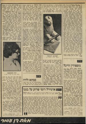 העולם הזה - גליון 2302 - 11 באוקטובר 1981 - עמוד 41 | סד* ,ובו סיפור נישואיהם של ברני כוהן עם כארכרה לאווט, והתאכזרות הגורל אליהם. ברני כוהן, שלחם במילחמת־האזרחים בספרד בבריגדת לינקולן ה אמריקאית, פגש בבארברה