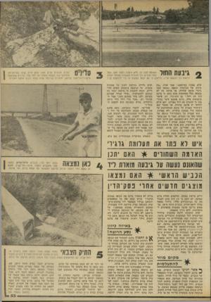העולם הזה - גליון 2303 - 19 באוקטובר 1981 - עמוד 53   גיבעת החול חשופה לעין כל. היא ניצבת כמטר וחצי מעל לפני הכביש וכל מכונית העוברת בצומת יכולה לראות כל הנעשה עליה. הי תכן כי זוג יבחר במקום זה כדי להתעלס בו 7 שלא