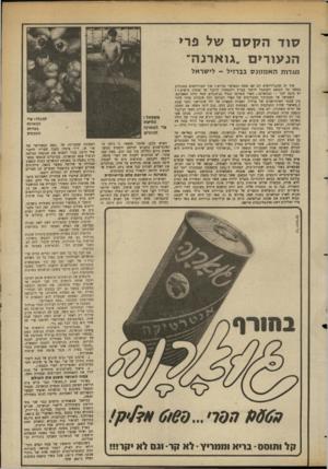העולם הזה - גליון 2366 - 5 בינואר 1983 - עמוד 28 | סודהקסםשלפ רי הנעורים ״גו א רנו ד־מגדות האמזונס בברזיל ־ לישראל איך זה שד,ברזילאים הם עם שמח ומאושר ובריא ז איך הברזילאים מסוגלים במשך כל תקופת הקרנבל לרקוד