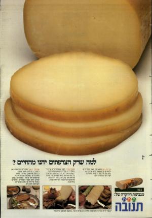 העולם הזה - גליון 2386 - 25 במאי 1983 - עמוד 47 | שרק הצרפתים יחנו מהחיים? גבינת בשן מתאימה מאד לכריכים ולחטיפיס. אפשר להגיש גבינת בשן עם פירות, ירקות, לחמים וקרייקרים למיניהם. חטיף ערב. לפני שמתחילים שידורי