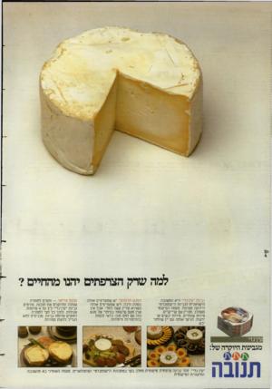 העולם הזה - גליון 2387 - 1 ביוני 1983 - עמוד 20   למה שדק הצרפתים יחנו מהחיים? גבינת ״עין־גדי״ היא התשובה הישראלית לגבינת ה״קממברט״ הידועה מצרפת. טעמה הפיקנטי משתלב מצויין עם קרייקרים, פיחת עונתיים, פיחת יבשים