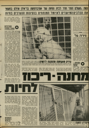העולם הזה - גליון 2388 - 8 ביוני 1983 - עמוד 52 | צוות ,,העולם הזהי׳ חדו לבית החיות שר אוניברסיטת בו־אירן וציום בחשאי את הכלבים המיועדים לאיזמל המנתחים בנסיונות הנערכים בחיות ך יי מראה היה מזעזע. כלב ענק 1
