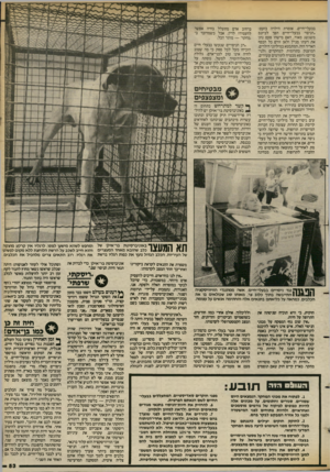 העולם הזה - גליון 2388 - 8 ביוני 1983 - עמוד 53 | בבעלי־חיים. אומרת הילדה בזעם: ״הניסוי בבעלי־חיים הפך לביזנס משגשג מאוד. האם מישהו פעם נתן את דעתו מניין ולאן זורם כל הכסף האדיר הזה, המתבטא במיליוני דולרים,