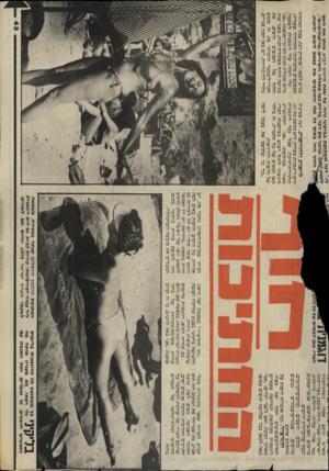 העולם הזה - גליון 2437 - 16 במאי 1984 - עמוד 43   — 1ע1׳ 1/ע 11 —, 1סד־ד^דד־ בביקיני ורוד, על שפת מיפגש דבוש, שנתן את הסם שהפד שם דבר, בדיוק כמו מאכליו, הקרויים ״טריפוליתיים׳, החוף הזה באים כל אלו החושבים את