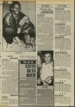 העולם הזה - גליון 2471 - 9 בינואר 1985 - עמוד 48   תמרורי הנכדה של טוביה נולדה אחר שבע שנות״נישואין, למשולם ריקלים ,60 ,ולסיא זאדורה,28 , בתם הבכורה, סרסר, על שם הפרפר האדום, הסרט הראשון, בו הופיעה האם,