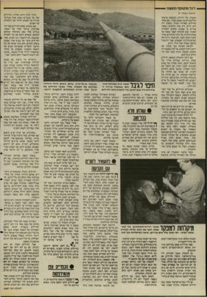 העולם הזה - גליון 2487 - 1 במאי 1985 - עמוד 42 | דגל מתנופף החוצה (המשך מעמוד )9 ראשיה. עיר דרוזית, הנמצאת ארבעה קילומטרים מן הצבא הסורי. שם עסקו החיילים באריזת הציוד. השטח היה רחב וריק. ורק כמה תותחים נשארו