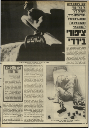 העולם הזה - גליון 2499 - 24 ביולי 1985 - עמוד 26   עדנה ב״נרו מוא״נת אתמאת! מורן וניקודאס ק״ג׳ גיבוו הסוטביוד,,,, שהינה גרים בעולם והמגיע בימים ארה להקרנה בארץ ^סור בירד־ ן* שנה קולנועית משמימה, שרוב סרטיה ^