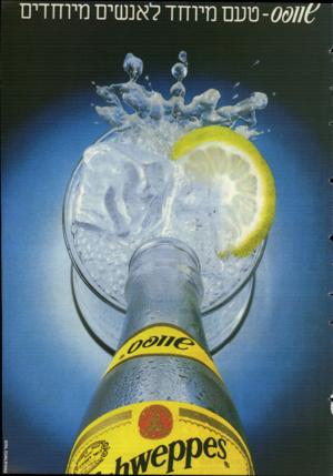 העולם הזה - גליון 2499 - 24 ביולי 1985 - עמוד 43  