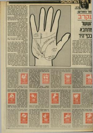 העולם הזה - גליון 2565 - 29 באוקטובר 1986 - עמוד 33 | בכף היד הדבר נעשה ביתר פשטות. יש רק לזהות קו אחד, הנקרא בשם ״שביל החלב״ .למעשה, אי״אפשר להתייחס רק לקו אחד. צורת כף־היד וכן הגבעות והקווים האחרים יש להם חלק רב