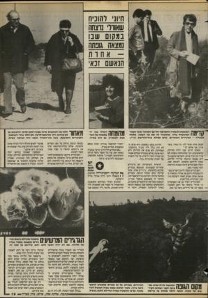העולם הזה - גליון 2579 - 4 בפברואר 1987 - עמוד 20 | חיוני להוכיח שאוור נוצחה במקום שבו נמצאה גובתה אח ות הנאשם זנאי 11*771 השופטת ולנשטיץ התקדמה יחד עם הסניגור שובר וקצץ- 11/1 1 | /המישטרה שדה, שהסבירו לה את פני