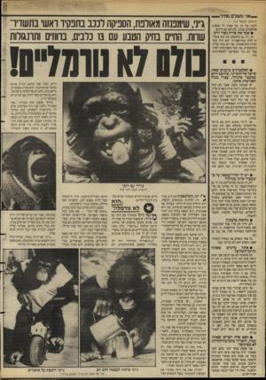 העולם הזה - גליון 2629 - 20 בינואר 1988 - עמוד 30 | .אני משלם מחיר — (המשך מעם 1ד ) 16 לדבר על זה. כך אמרו לי אנשים שחושבים כמוני, ביניהם גם ח״כים. • אבל את אריה נאור זרקו. כן, וזה גם טימטום. מה הוא אומר? זה חלק