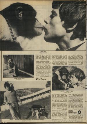 העולם הזה - גליון 2629 - 20 בינואר 1988 - עמוד 31 | ״לפעמים אני לוקח את ג׳יני איתי כשאני יוצא לבלות. אך באופן קבוע אני מהלך עימה כשהיא קשורה ברצועה, כי קיים תמיד ספק, שמא היא עלולה לתקוף או להתנהג בצורה